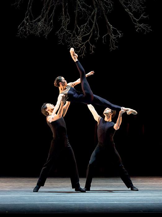 PIAS prod 18-19, Boston Ballet, Wings of Wax; photo © Rosalie O Connor